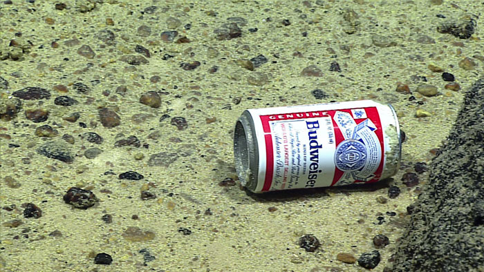 Beer Can found by the 3780 meters deep at Enigma Seamount in Mariana Trench. Photograph: NOOA office of Ocean Exploration