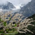 """An ode to """"Stairway to Heaven"""": Valley of Flowers National Park """"The journey not the arrival matters.""""- T.S. Eliot, Famous British poet.  Uttarakhand is a northern Himalayan state of India famous for its serene […]"""