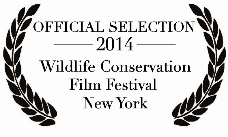 2014 WCFF Official Selection (1)
