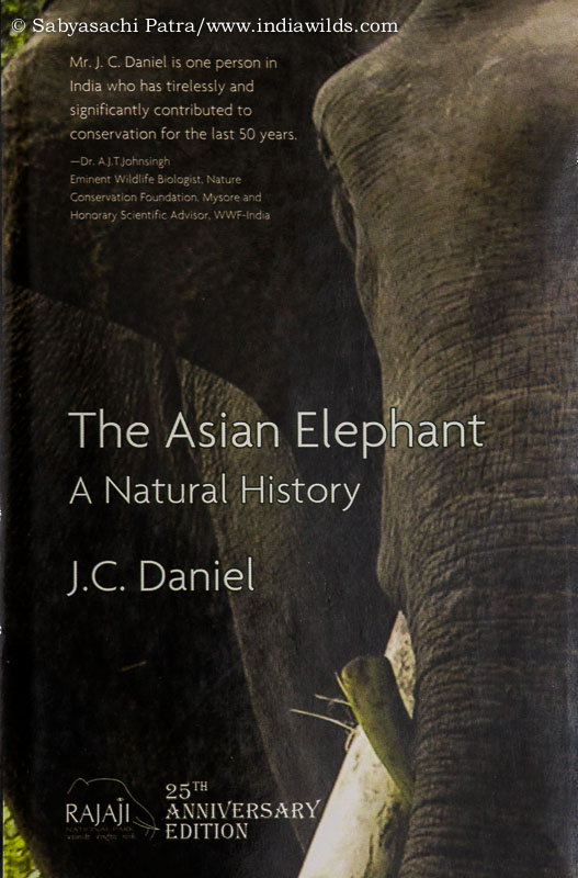 The Asian Elephant