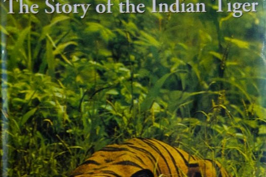 Tiger! The story of the Indian Tiger by Kailash Sankhala I wish to bring to the notice of our readers a book which throws light on the tiger as well as on its author himself, who […]