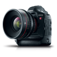 Wildlife Filming at 4K | Lenses for Canon EOS 1D C