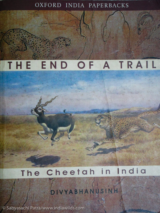 The End of A Trail - The Cheetah in India