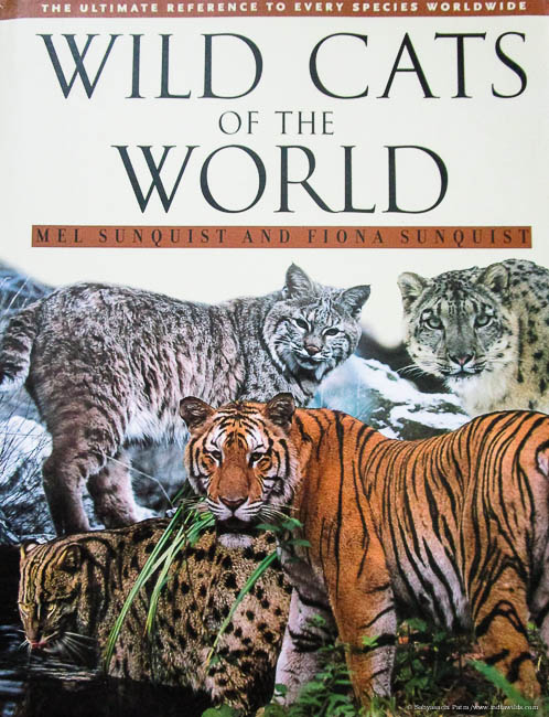 Book review of Wild cats of the world