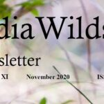 IndiaWilds Newsletter-Image-November-2020