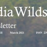 IndiaWilds Newsletter March-2021-Featured