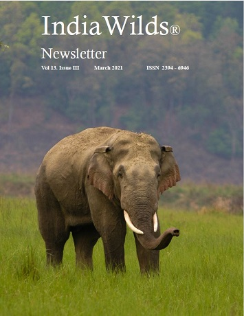 IndiaWilds Newsletter PDF-March-2021