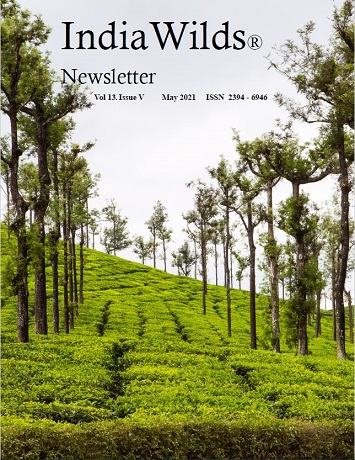 IndiaWilds Newsletter PDF-May-2021