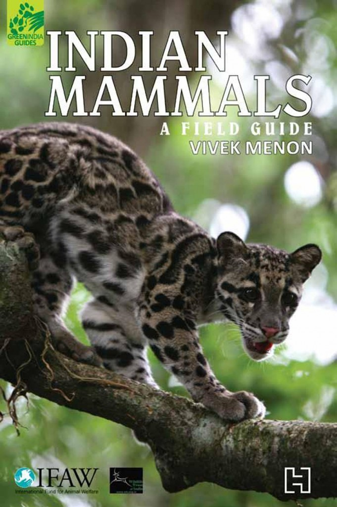 Indian Mammals - A Field Guide