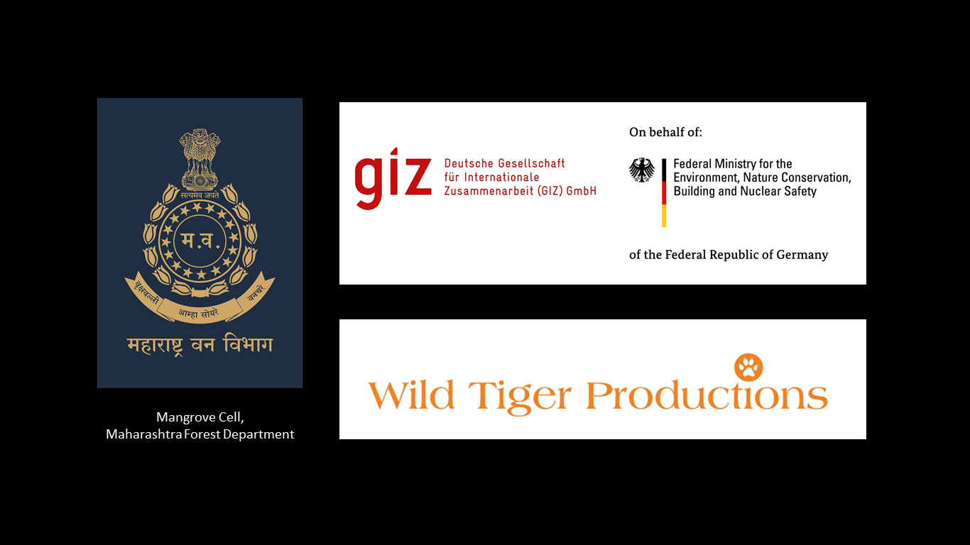 Logos for Jewels of Thane Creek Film