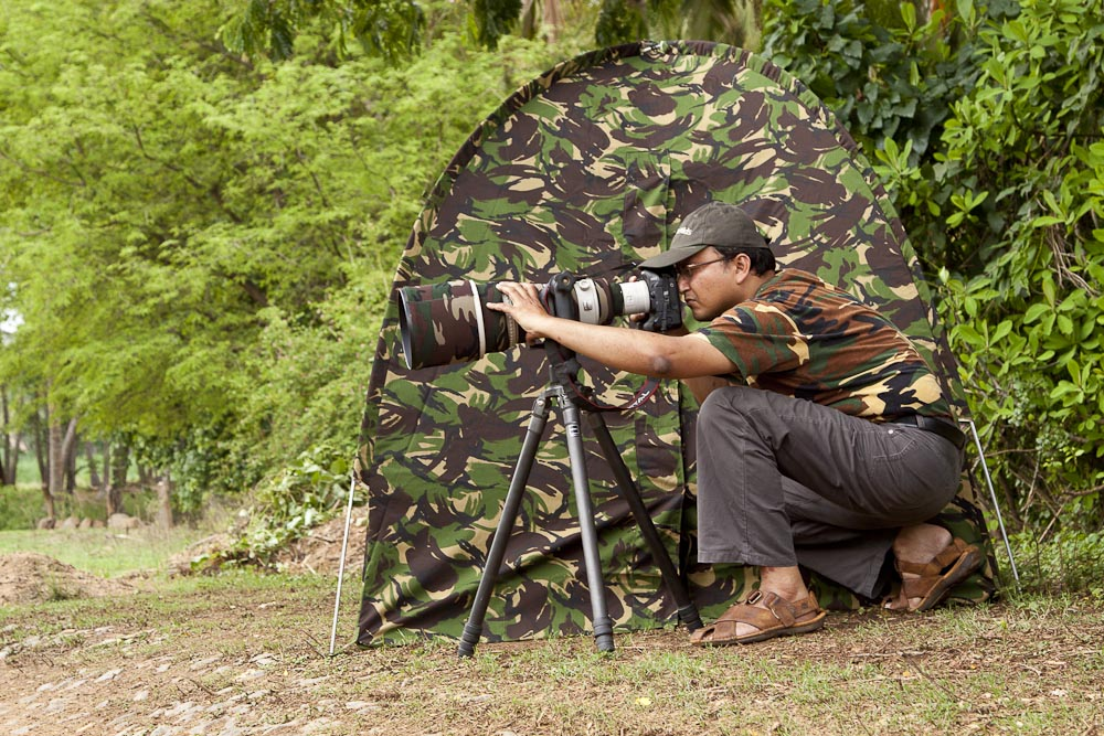 Wildlife Photographers Wildlife Photographer s