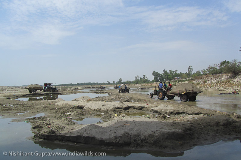 Sand mining in himalayan rivers