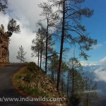 The Indian Himalayan landscape