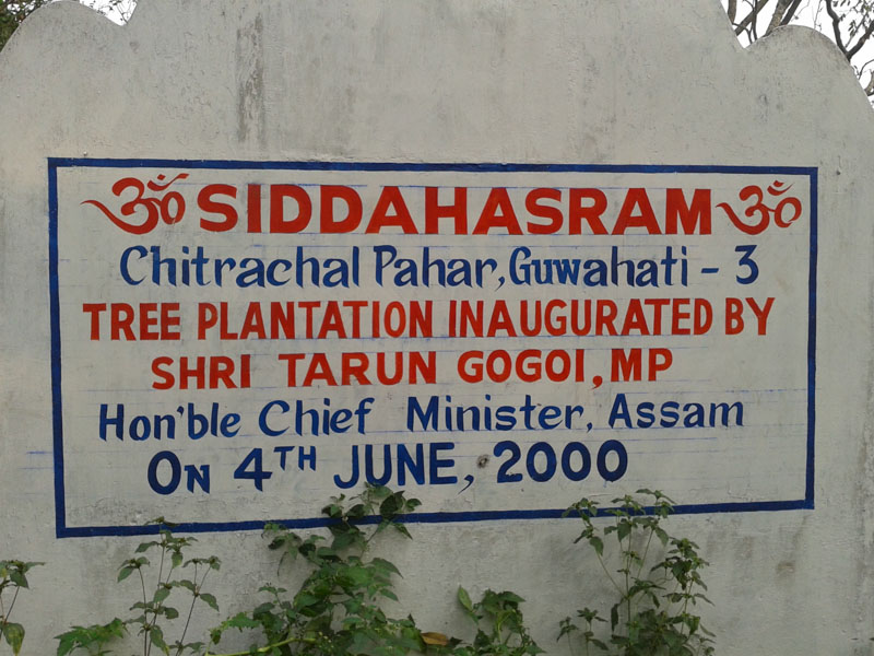 Plantation by the CM