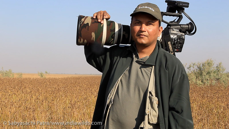Filming wildlife with C300