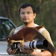 Wild India | An Encounter with a Wild Malabar Giant Squirrel It was about 6.30 am in the morning on the last day of my field visit to Wayanad and Nagarhole. The last night I...