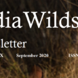 IndiaWilds Newsletter Vol. 12 Issue IX ISSN 2394 – 6946 Download the full Newsletter PDF by clicking the below button – Technology per se will not save us from Climate Change: Climate change is on […]