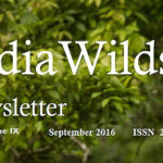 IndiaWilds Newsletter Vol. 8 Issue IX