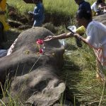 A woman lays flowers on the dead elephant killed by a train