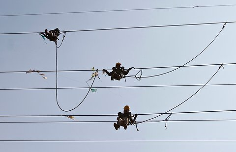 Kites entangled in Electric wires