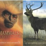 mammals -book cover photo