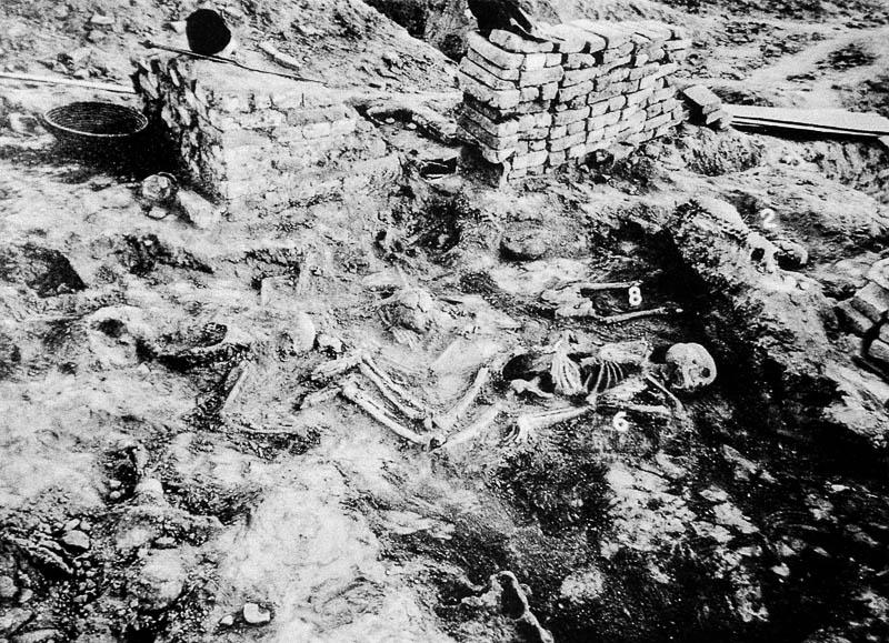 Mohenjodaro skeletons