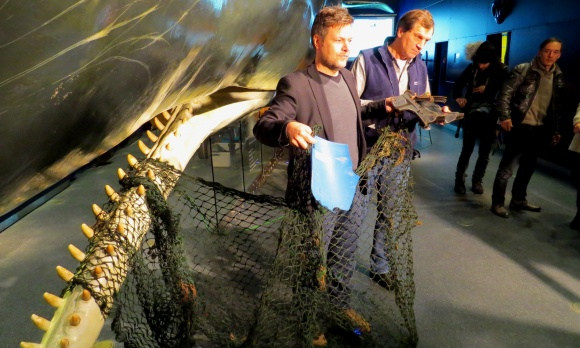 13m long net used for crab fishing found inside stranded Sperm Whale body: Photograph: Ministry of Energy, Agriculture, Environment and Rural Areas in Schleswig-Holstein
