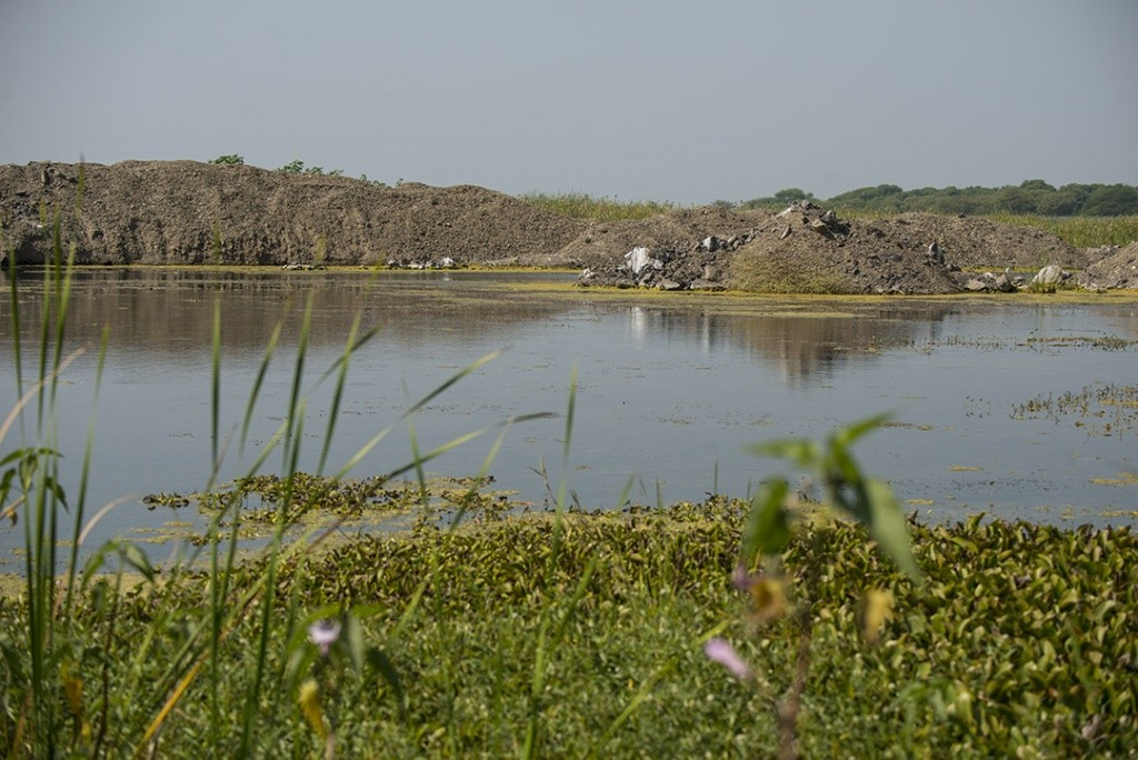 Nandur Madhyameshwar : Neglected Wetlands