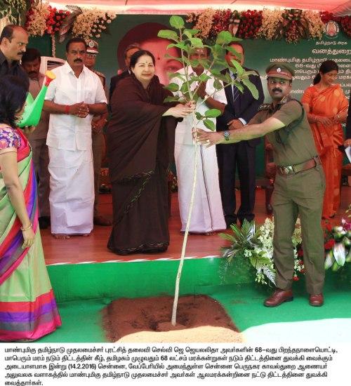 CM Jayalalitha planting sapplings