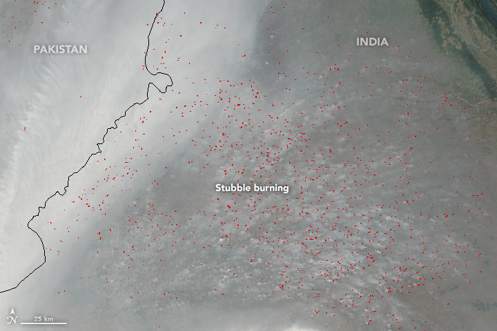 NASA image showing crop burning in Punjab