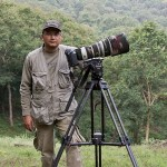 www.indiawilds.comdiary_w9z9042.jpg