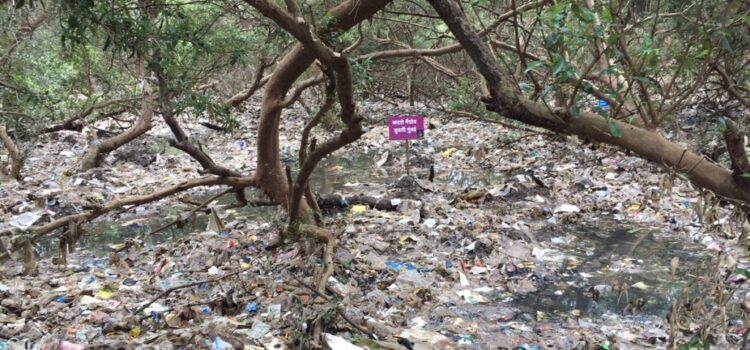 Single Use Plastic items to be phased out by July 2022 Government notifies the Plastic Waste Management Amendment Rules, 2021, prohibiting identified single use plastic items by 2022 Pollution due to single use plastic items […]