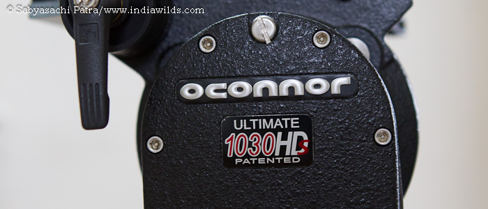 My Wildlife Filming Equipment: OConnor 1030 HDS Not a single day passes when someone or the other asks me about my equipment and suggestions for equipment buying. Though equipment is a means to an end, […]