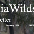 IndiaWilds Newsletter Vol. 13 Issue I ISSN 2394 – 6946 Download the full Newsletter PDF by clicking the below button – Wildlife Conservation & Discovering India History attaches lot of importance to travellers to ancient […]