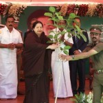 Jayalalitha planning sappling
