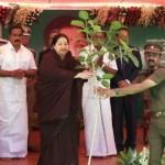 Jayalalitha planning sappling